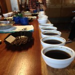 coffeecups450
